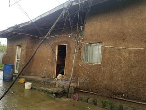 2bdrm House in ኬንቴሪ, Oromia-Finfinne for Rent   Houses & Apartments For Rent for sale in Oromia Region, Oromia-Finfinne